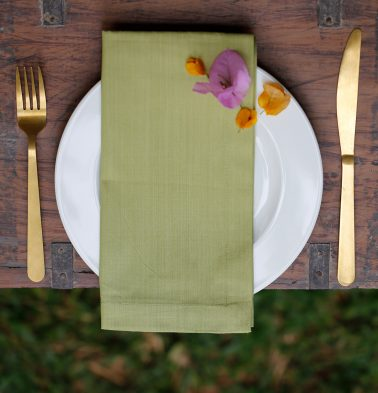 Solid Cotton Table Napkins Tender Green - Set of 6